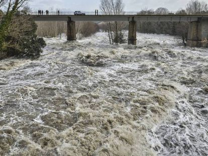 El caudal del río Ter, este jueves durante el desagüe de la presa del Pasteral, en el municipio de La Cellera de Ter (Girona).