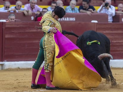Morante de la Puebla, a la verónica, en la plaza de toros de Murcia.