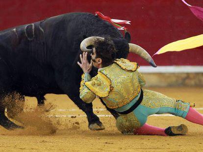 El torero Juan Jose Padilla, en el momento de la cogida.