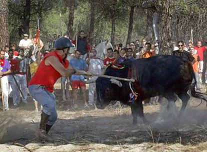 El salmantino José Ángel González ganó el derecho a matar al toro <i>Enrejado.</i>