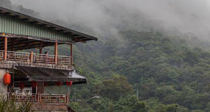Mirador en el Maokong, donde la selva se mezcla con las plantaciones de té.