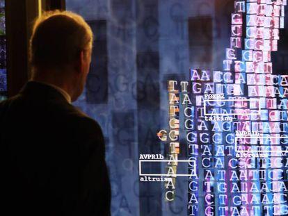 Imagen de una instalación interactiva. / FELIPE TRUEBA (EFE)