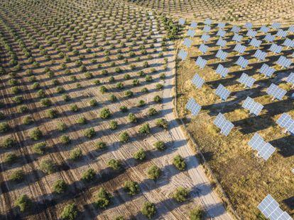 Vista aérea de un terreno con paneles solares en la provincia de Lleida.