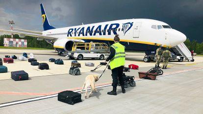 Agentes de seguridad utilizan un perro rastreador para comprobar el equipaje de los pasajeros del avión de Ryanair con matrícula SP-RSM, que transportaba al opositor Roman Protasevich