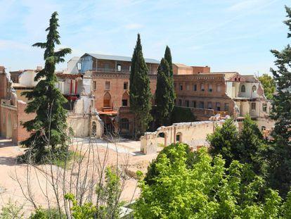 Convento de las Damas Apostólicas. Uno de los cipreses talados estaba en el patio expuesto tras los derribos.
