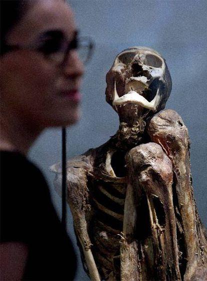 Momia precolombina en la exposición de Barcelona.