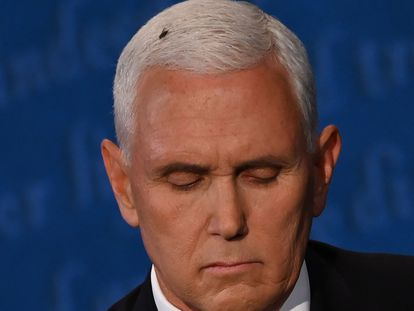 Una mosca se colocó en el cabello del vicepresidente de EE UU, Mike Pence, durante el debate.