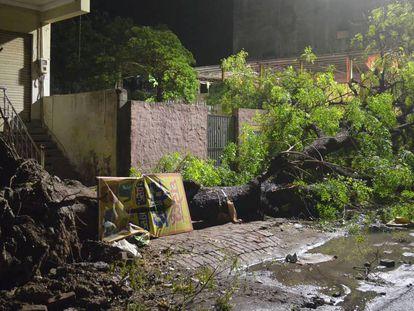 Un árbol tumbado por el viento en la fuerte tormenta de anoche en Agra, en el Estado indio de Uttar Pradesh.