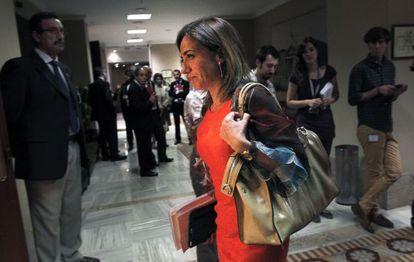 Chacón, el año pasado, en el Congreso.
