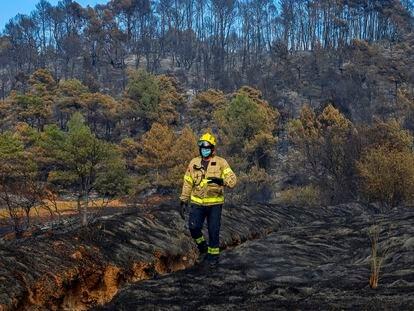 Un bombero camina por una zona calcinada por el incendio originado en Santa Coloma de Queralt (Tarragona).