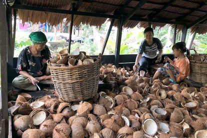 Mujeres en una aldea en Kalimantan occidental, Indonesia, cuyos medios de vida y seguridad alimentaria se han visto afectados por la expansión de una plantación de palma en su tierra.