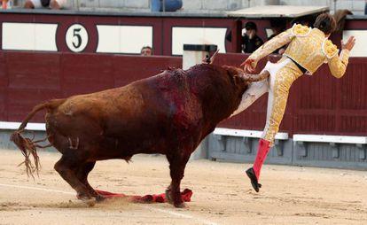 Juan Leal es corneado por su primer toro, hoy en Las Ventas.