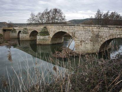 El río Carrión a su paso por la localidad palentina de Husillos.