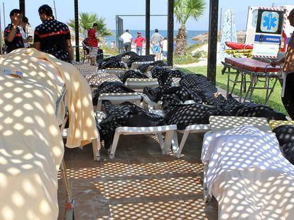 Personal sanitario junto a algunos de los cuerpos de los turistas fallecidos en Susa (Túnez). La mayoría de víctimas estaba en una playa junto al hotel.