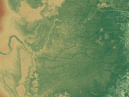 Imagen de la red de canales y campos conocida como Pájaros del Paraíso, en Belice.
