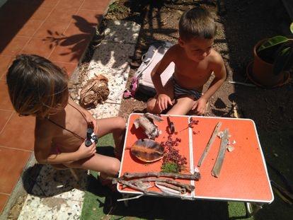 Dos niños con su minimuseo de plantas.
