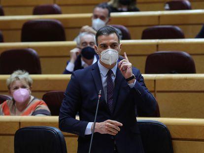 El presidente del Gobierno, Pedro Sánchez, durante una sesión de control al Gobierno en el Senado. EFE/Kiko Huesca