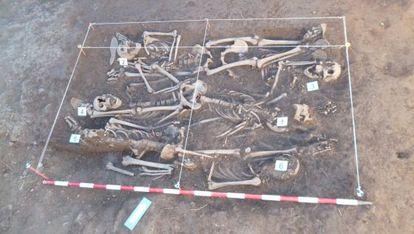 Exhumación de seis de los 10 fusilados en Barcones (Soria) llevada a cabo en julio de 2013 por el antropólogo forense Francisco Etxeberria.