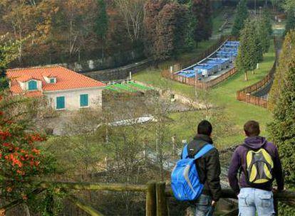 Piscifactoría de O Carballiño (Ourense) en la que se criará una reserva de trucha autóctona para futuras repoblaciones.