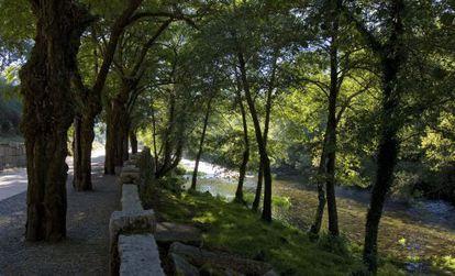 Un tramo del curso del río Tea a su paso por Mondariz.