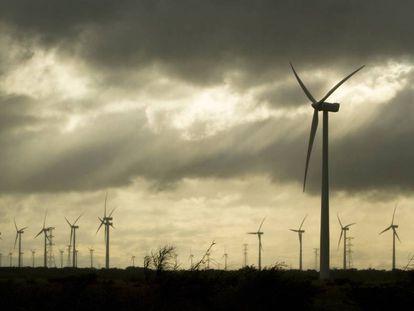 Un campo de energía eólica en el estado de Oaxaca (México).