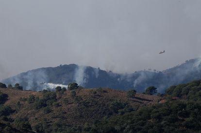 Aviones especializados en extinción de incendios sobrevolaron este viernes la zona quemada de Sierra Bermeja.