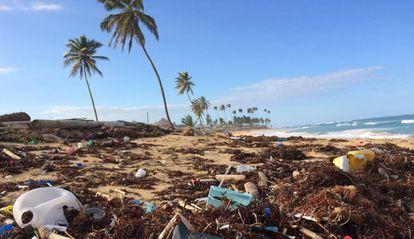 Esperan conseguir evitar en este mes de julio mil millones de desechos plásticos