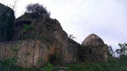Ruinas de la iglesia visigoda de Barbate entre maleza.