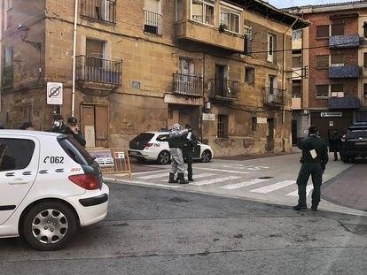 Agentes de la Guardia Civil, este domingo en Haro (La Rioja).