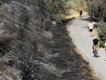 Una de las zonas afectadas por el incendio.