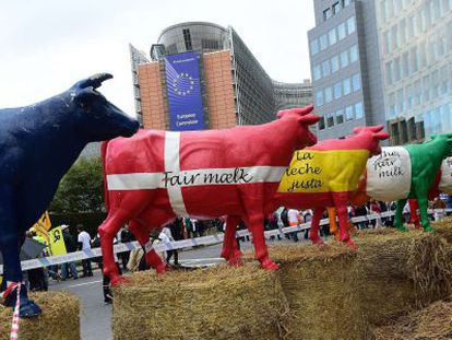 Miles de agricultores protestan en Bruselas por el bajo precio de la leche.