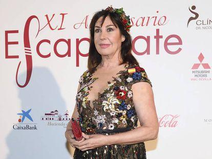 Carmen Martínez-Bordiú en unos premios en Sevilla, a finales de octubre.