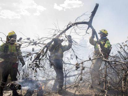Trabajos de extinción en el incendio de la Sierra Calderona.