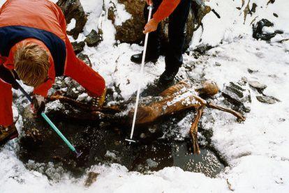 Ötzi, <i>el hombre del hielo,</i> fue hallado en 1991 en la planicie subglaciar de Tisenjoch, entre Austria e Italia.