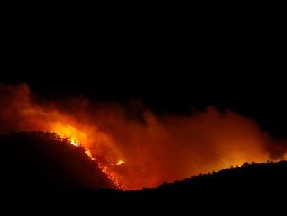 Incendio en Arico, en la isla de Tenerife.