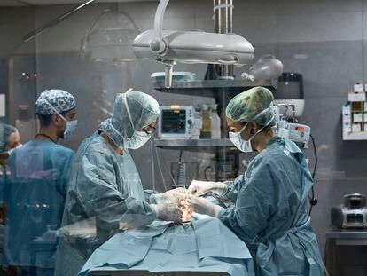 El objetivo es que los futuros médicos aprendan a manejar herramientas virtuales para practicar técnicas clínicas y quirúrgicas.