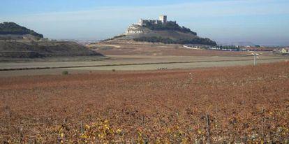 Desde los viñedos de Pago de Carraovejas se puede ver el castillo de Peñafiel (Valladolid), que domina el valle del Duero.