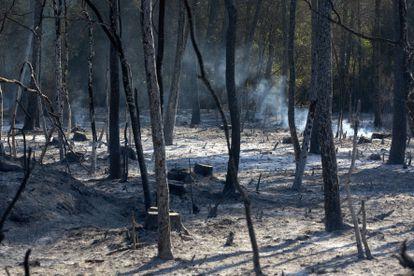 Una zona arrasada por las llamas este domingo tras declararse un incendio forestal en Ventalló (Girona).