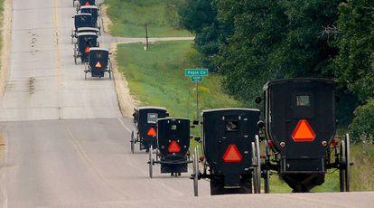 Carros de caballos utilizados por los Amish.