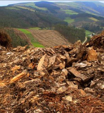 Parapeto destrozado por la apertura de un camino para permitir el paso de maquinaria pesada en el Castro do Monte da Arca (municipio de Mondoñedo, Lugo).