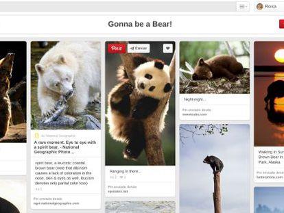 Ejemplo de tablón en Pinterest.