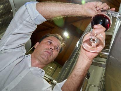 El gerente de la bodega Lyng durante el proceso de fabricación de su vino.