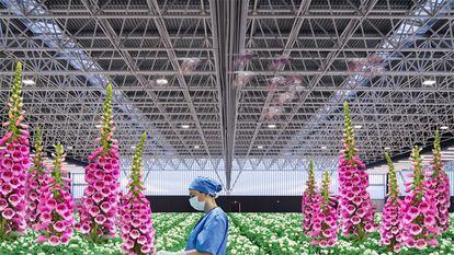 Imagen del El hospital del futuro, la instalación audiovisual del estudio OMA expuesta en Matadero en Madrid