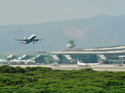 Un avión despega en el aeropuerto de El Prat frente a la zona natural de La Ricarda.