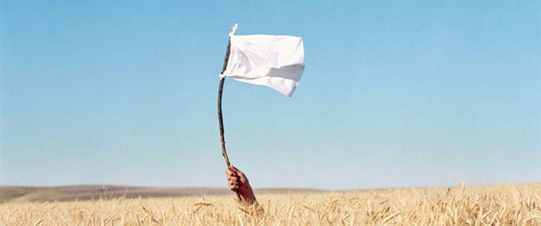 Una joven sostiene una vara con una bandera blanca entre un campo de trigo.