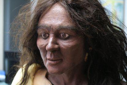 Aproximación facial de Elba, en su última versión con pigmentación oscura, según las conclusiones definitivas de los investigadores.