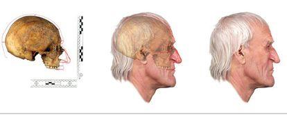 Un grupo de científicos han realizado una reconstrucción del rostro de Nicolás Copérnico a partir de un cráneo encontrado en 2005