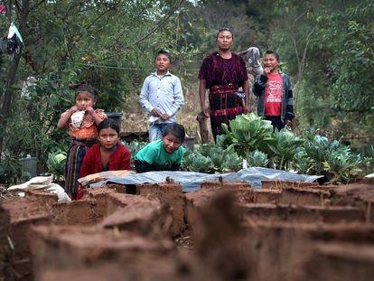 La familia Cac Yat frente a las coliflores que plantaron en su huerto, en Quiché, Guatemala.