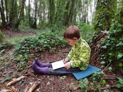 Un niño dibuja en una actividad de la escuela-bosque Nenea, en Lugo