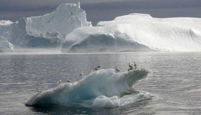 Un iceberg cerca de Groenlandia.